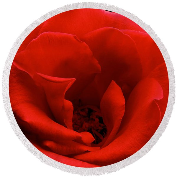 Photograph Of A Red Rose Round Beach Towel
