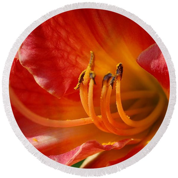Daylilly Close Up Round Beach Towel