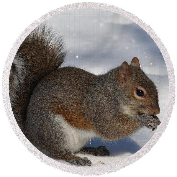 Gray Squirrel On Snow Round Beach Towel