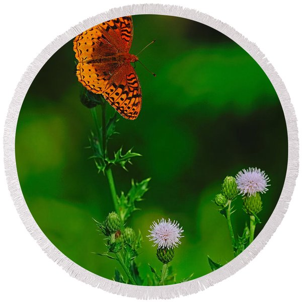 Great Spangled Fritillary Round Beach Towel