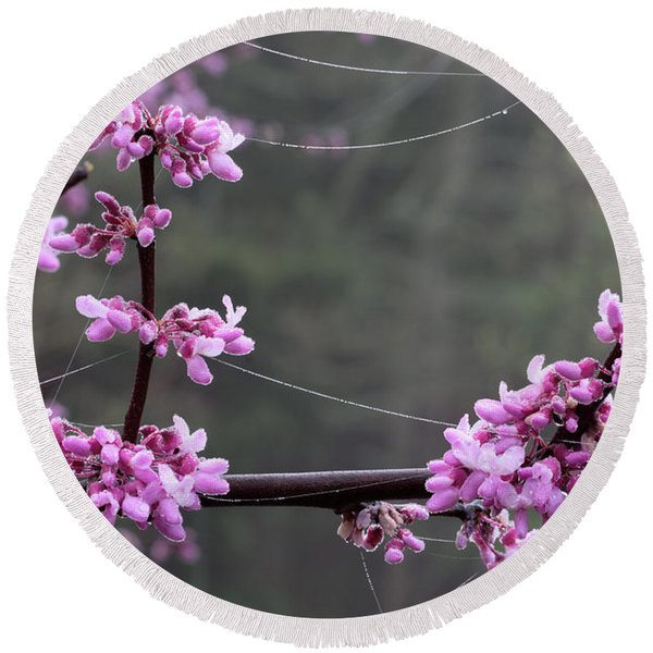 Redbud With Webs And Dew Round Beach Towel