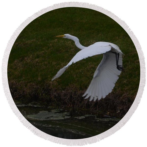 White Egret Round Beach Towel