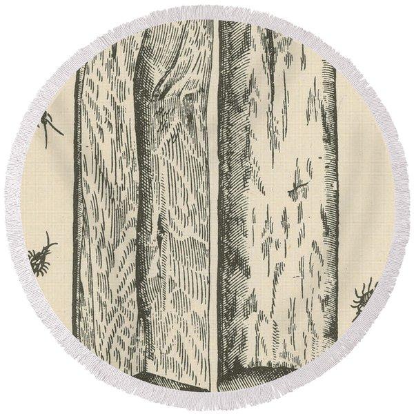White Sandalwood, Alchemy Plant Round Beach Towel