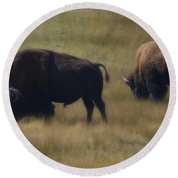 Wyoming Buffalo Round Beach Towel