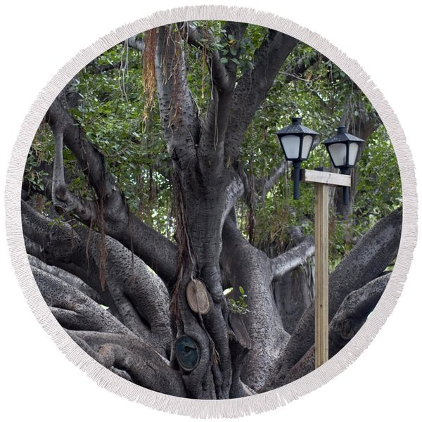 Banyan Tree, Maui Round Beach Towel