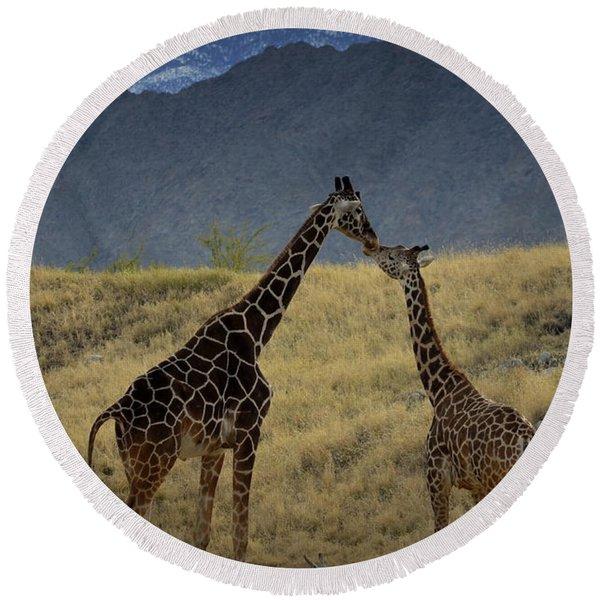 Desert Palm Giraffe 001 Round Beach Towel