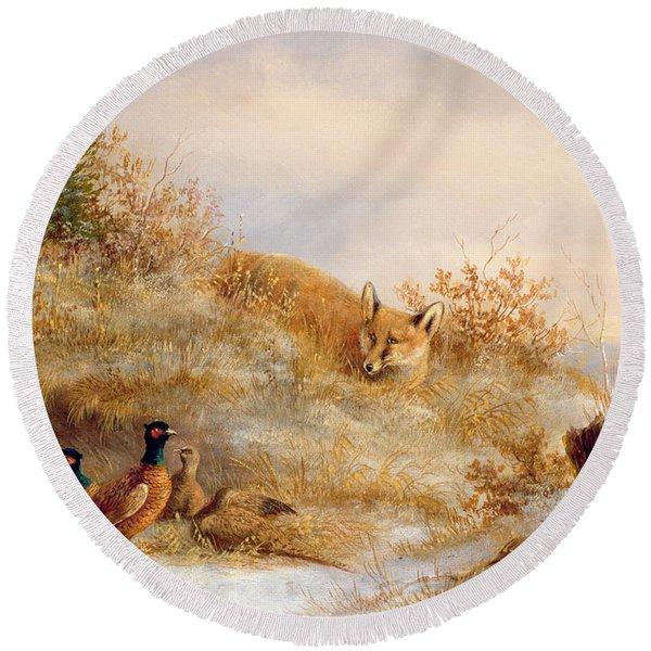 Fox And Pheasants In Winter Round Beach Towel