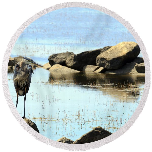 Heron On The Rocks Round Beach Towel