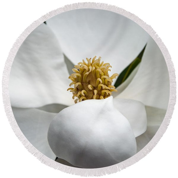 Magnolia Flower Round Beach Towel