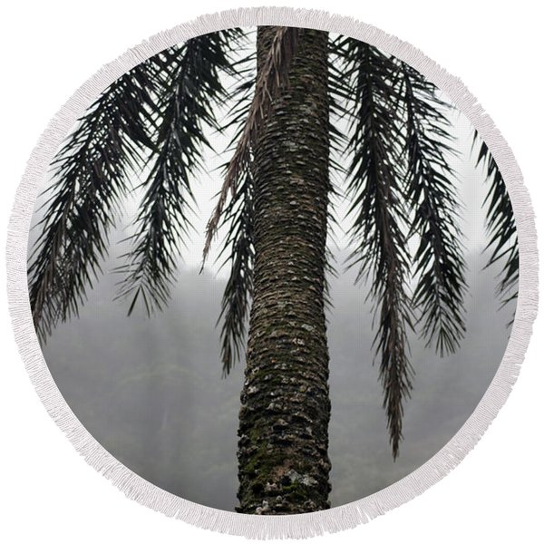 Palm, Koolau Trail, Oahu Round Beach Towel