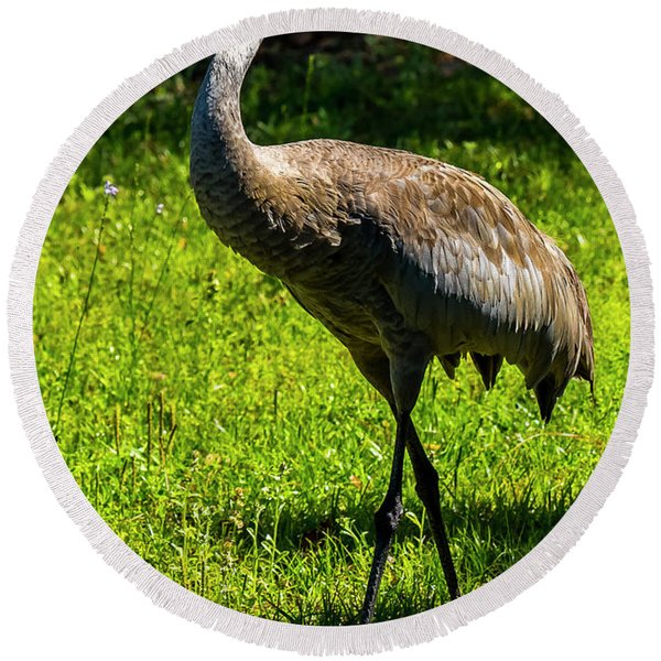 Sand Hill Crane Round Beach Towel