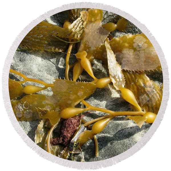 Seaweed On Sand Round Beach Towel