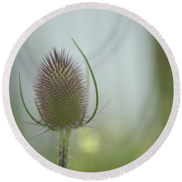 Thistle Round Beach Towel
