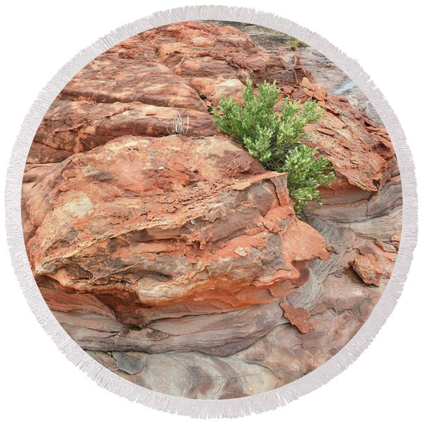 Colorful Sandstone In Valley Of Fire Round Beach Towel