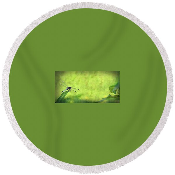 A Day In The Swamp Round Beach Towel