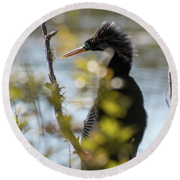 Anhinga 3 March 2018 Round Beach Towel