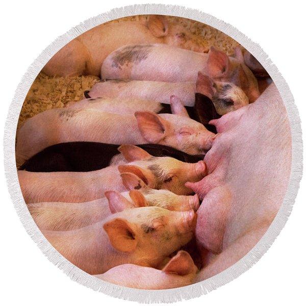 Animal - Pig - Comfort Food Round Beach Towel