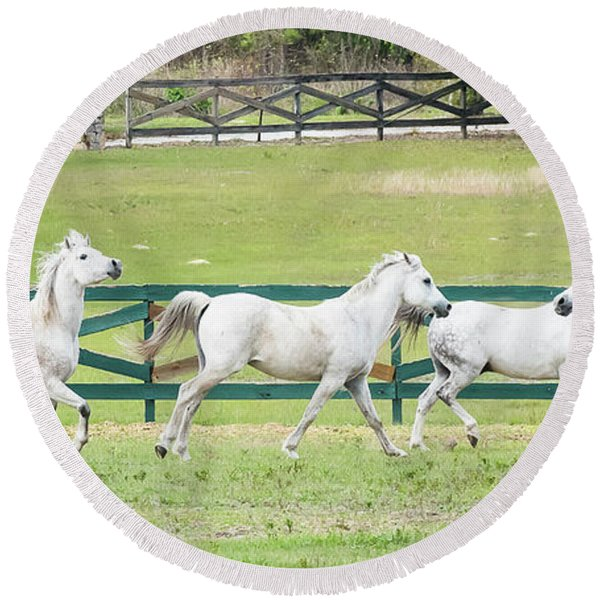 Arabian Horses Round Beach Towel