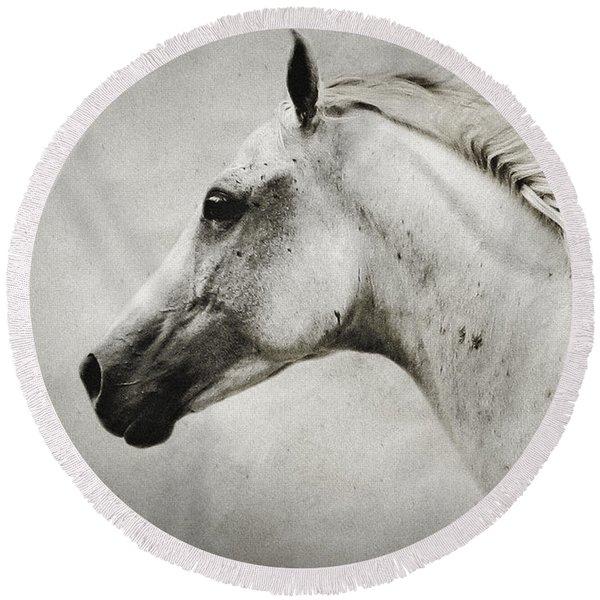 Arabian White Horse Portrait Round Beach Towel