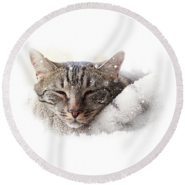 Cat And Snow Round Beach Towel