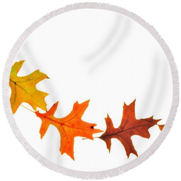 Autumn Leaves 1 Round Beach Towel