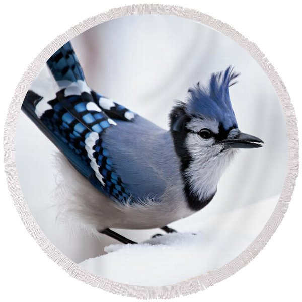 Bad Feather Day Round Beach Towel