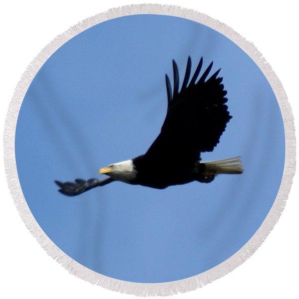 Bald Eagle Soaring High Round Beach Towel