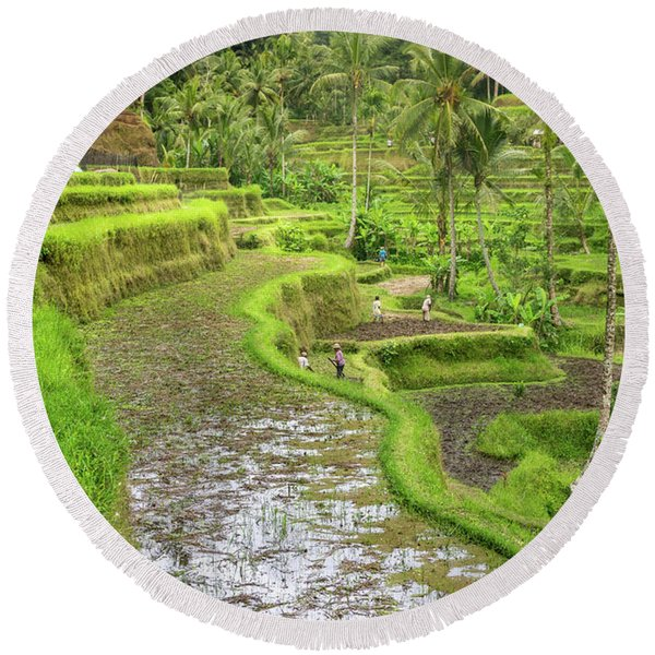 Bali - Rice Fields Terraces Round Beach Towel