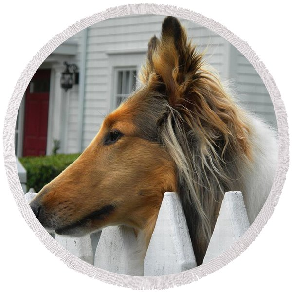 Bellingham Collie Round Beach Towel