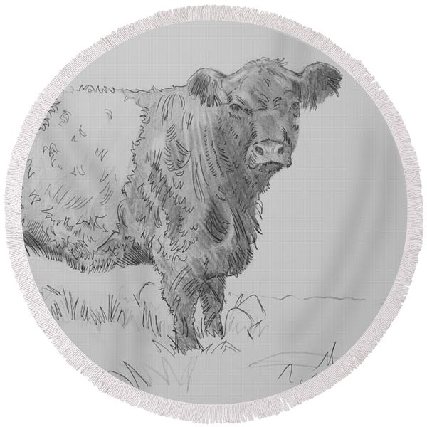 Belted Galloway Cow Pencil Drawing Round Beach Towel