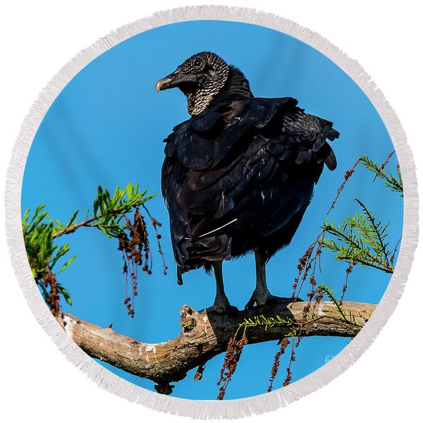 Black Vulture Round Beach Towel