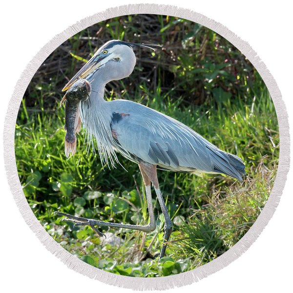 Blue Heron With Fish Round Beach Towel