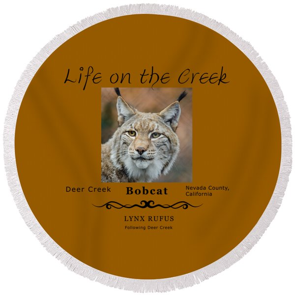 Bobcat - Lynx Rufus Round Beach Towel