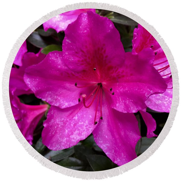 Bold Pink Flower Round Beach Towel