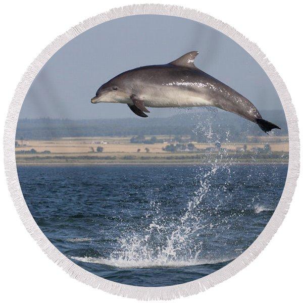 High Jump - Bottlenose Dolphin  - Scotland #42 Round Beach Towel