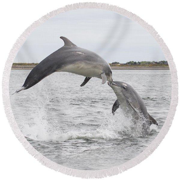 Bottlenose Dolphins - Scotland #1 Round Beach Towel