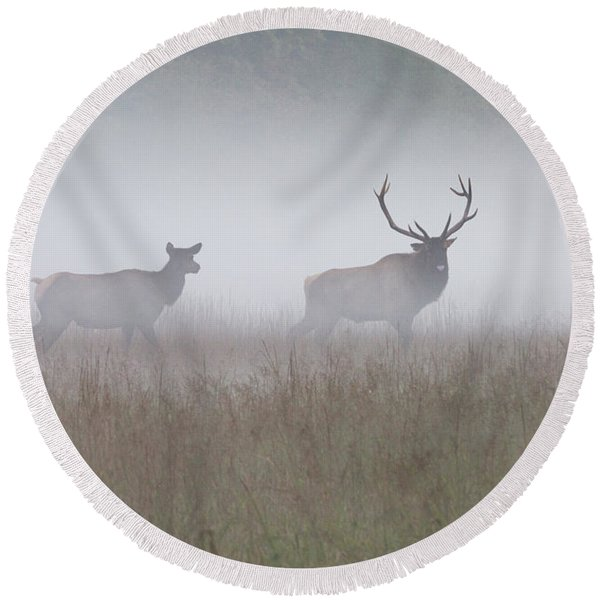 Bull And Cow Elk In Fog - September 30 2016 Round Beach Towel