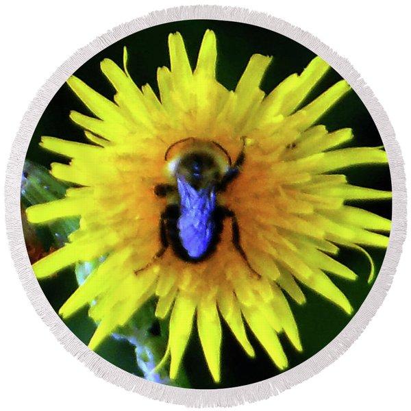 Bullseye Bumblebee Dandelion Round Beach Towel