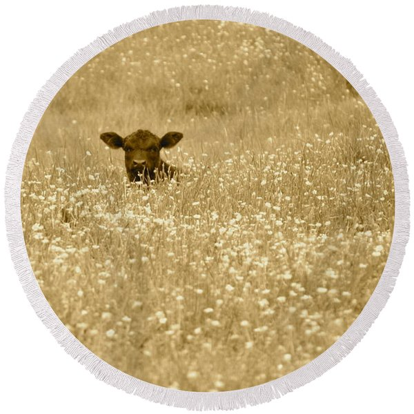 Buttercup In Sepia Round Beach Towel