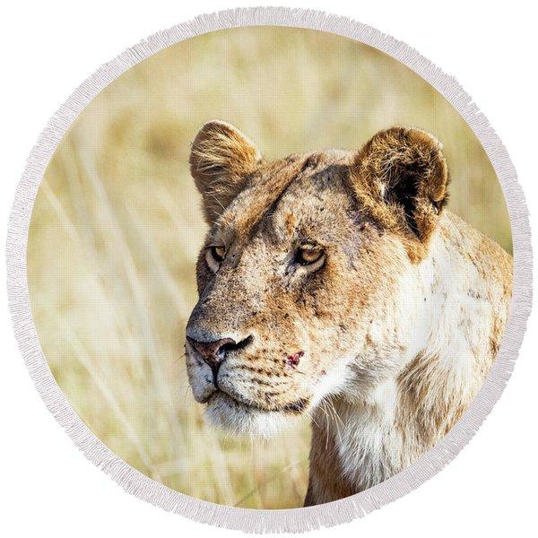 Closeup Lioness Round Beach Towel