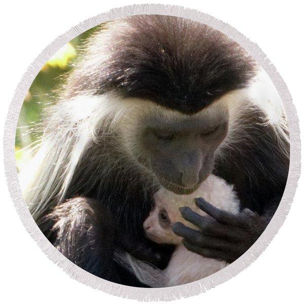 Colobus Monkey And Child Round Beach Towel