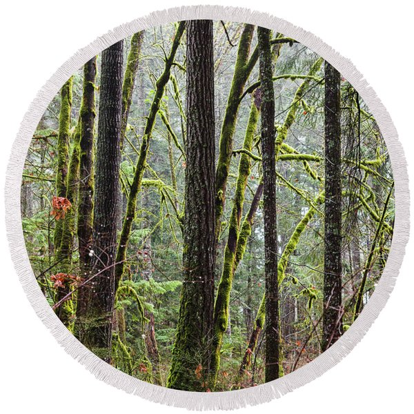 Comox Valley Forest-1 Round Beach Towel