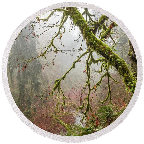 Mist In The Forest Round Beach Towel