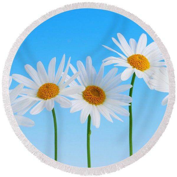 Daisy Flowers On Blue Round Beach Towel