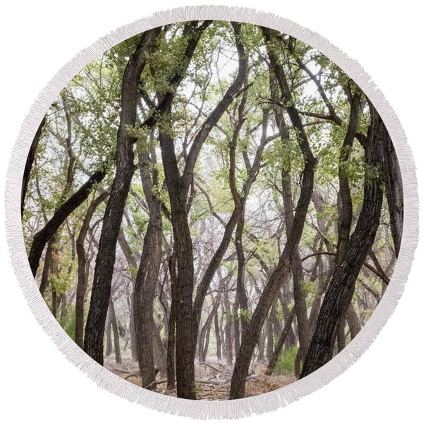Round Beach Towel featuring the photograph Dance Of The Trees by Mary Lee Dereske