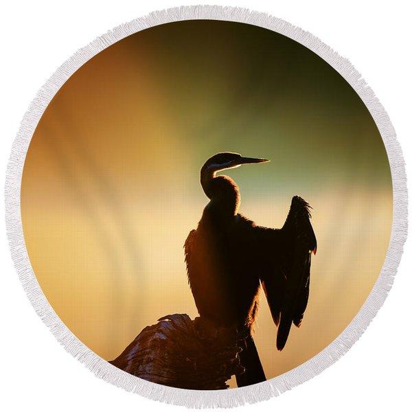 Darter Bird With Misty Sunrise Round Beach Towel