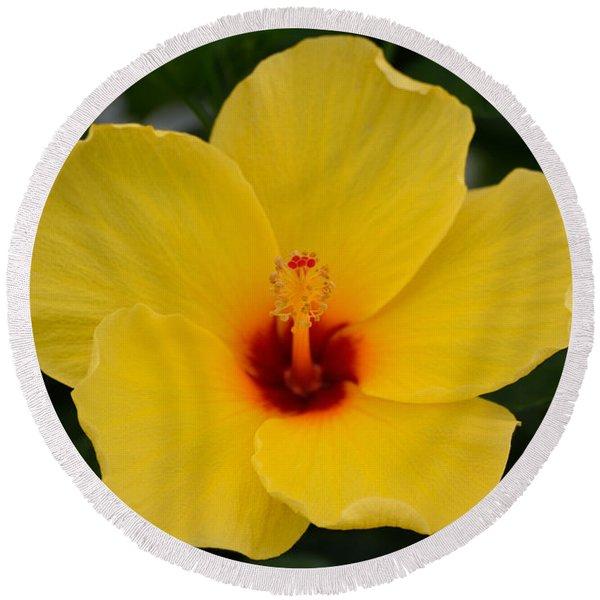 Decorative Floral Photo A9416 Round Beach Towel