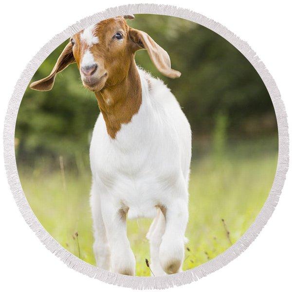 Dougie The Goat Round Beach Towel