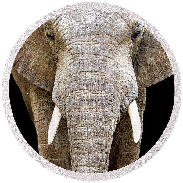 Elephant Face Closeup Looking Forward Round Beach Towel