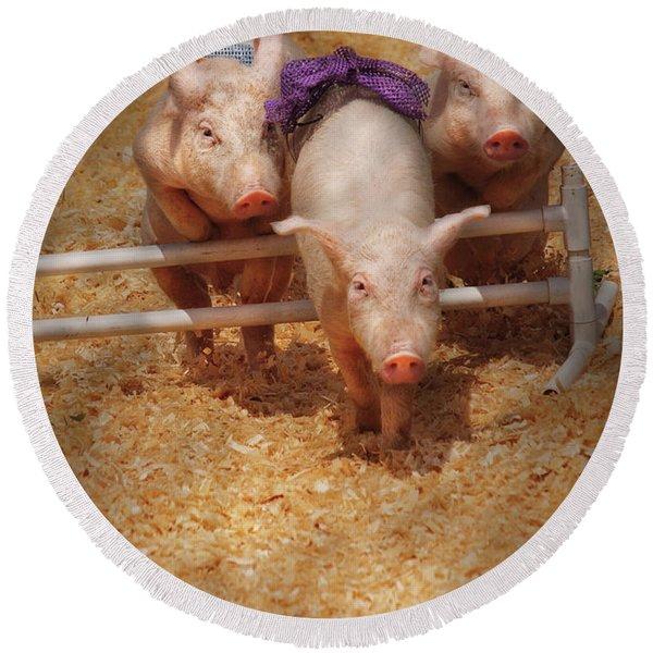 Farm - Pig - Getting Past Hurdles Round Beach Towel